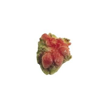 Moule silicone coeur de fruits